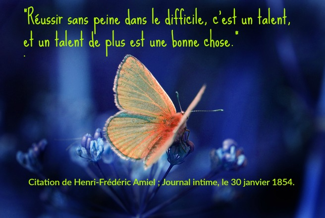 butterfly-citation